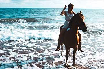 Son Maiol - Horseriding in Mallorca
